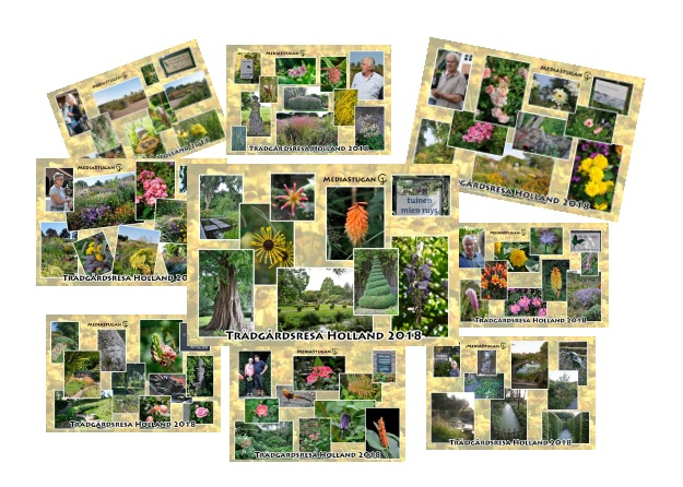 A collection of cards over the gardens we visited...