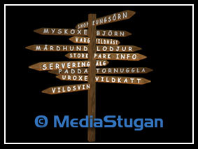 A signpost for guidance.